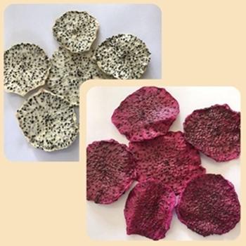 dried_soft_dragon_fruit_slices _pitahaya